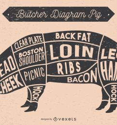 pig butcher diagram illustration download large image 1701x1000px [ 1701 x 1000 Pixel ]