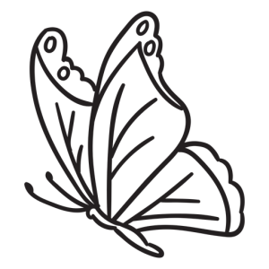 butterfly drawing side clipart sideview stroke mermaid