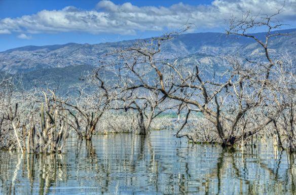 Resultado de imagen para Parque Nacional Isla Cabritos