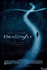Mật Hiệu Chuồn Chuồn / Dragonfly