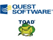 Image result for quest toad