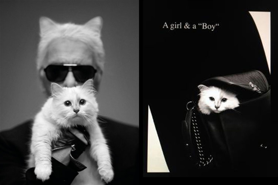 Choupette Lagerfeld - Vogue.it