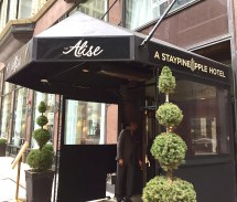 Cheerful Hotel Prompts Smile Alise Chicago