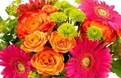 florais para combater stress: Rescue Remedy