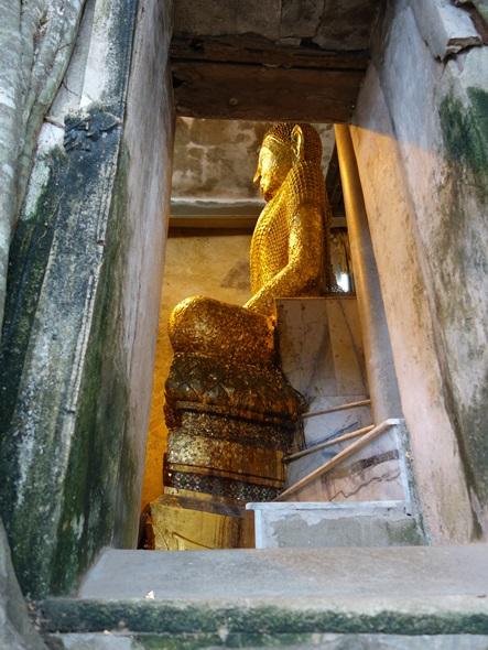 泰國樹中廟泰拳公園 | 偉士牌的實驗室