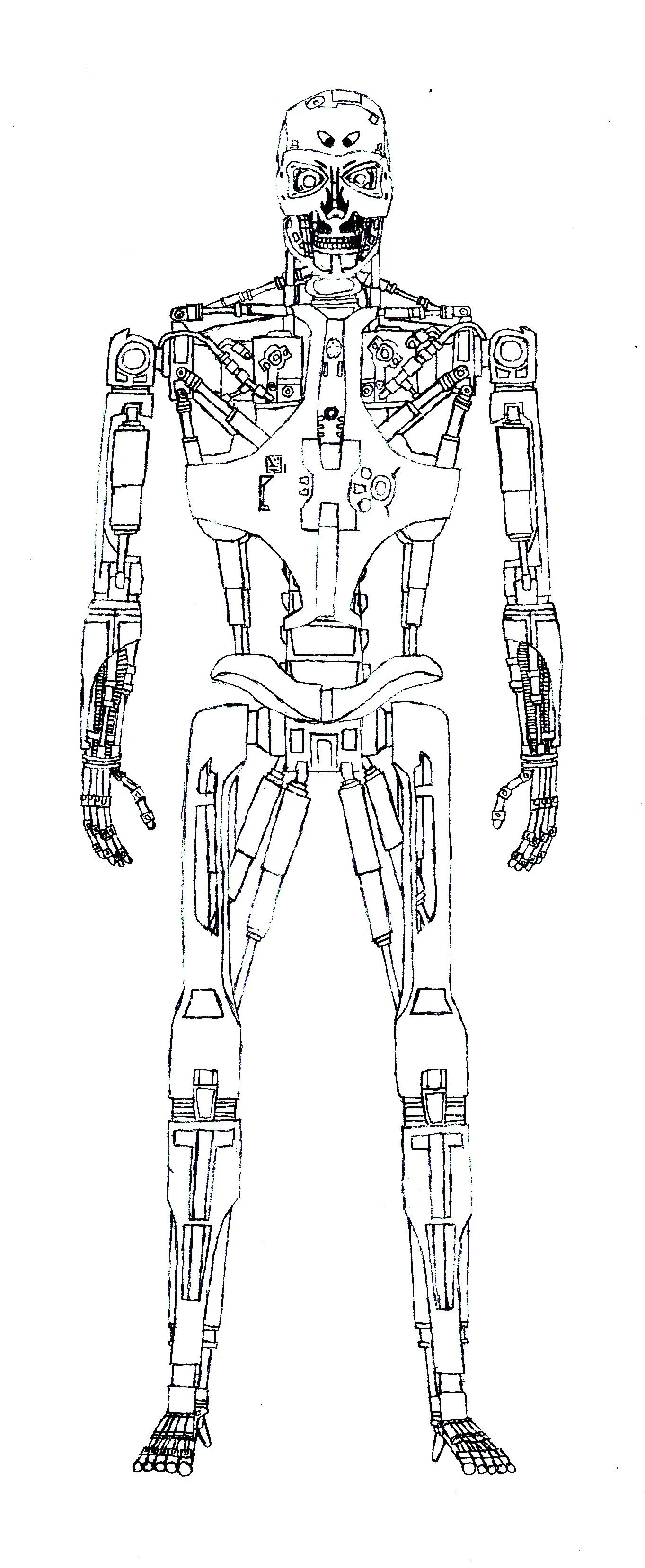 schematic body drawing
