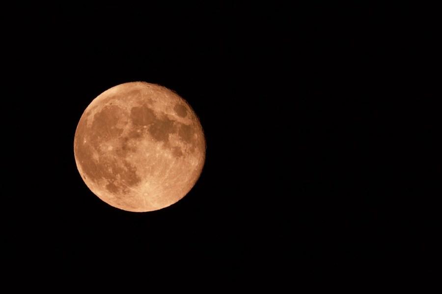 luna fragola