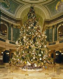 Annual Wisconsin Christmas Tree
