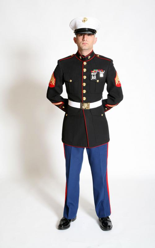 What is the Difference Between the US Army and the US Marines