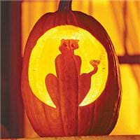 Animal Pumpkin