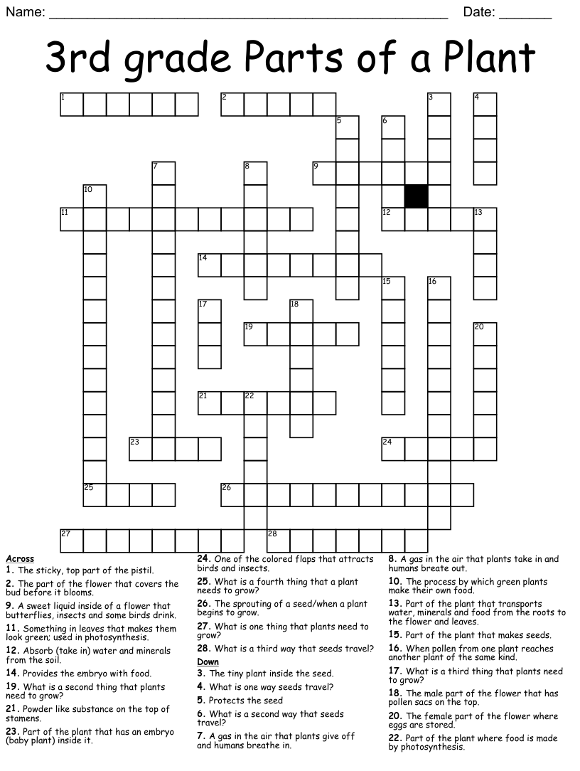 medium resolution of All About Plants Crossword - WordMint