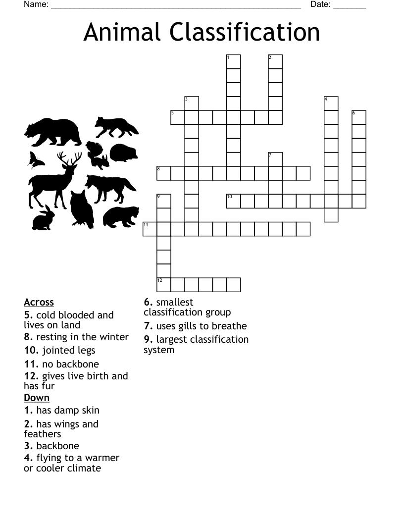 medium resolution of Animal Classification Crossword - WordMint