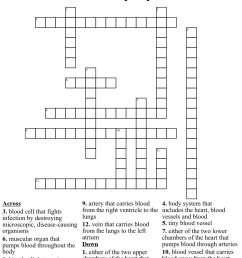 Circulatory System Crossword - WordMint [ 1060 x 1121 Pixel ]