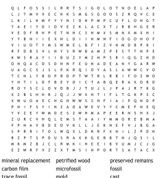 Fossil Word Search - WordMint [ 895 x 1121 Pixel ]
