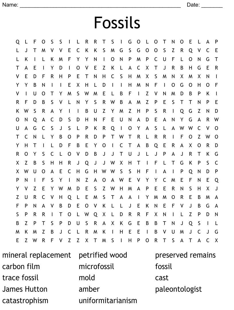 hight resolution of Fossil Word Search - WordMint