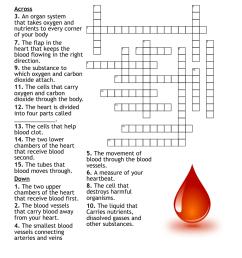 Circulatory System Crossword - WordMint [ 1086 x 1121 Pixel ]