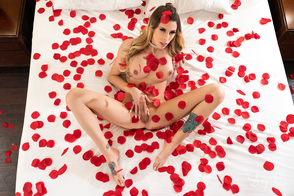 Pics of Shemale Casey Kisses on a bed of rose petals does