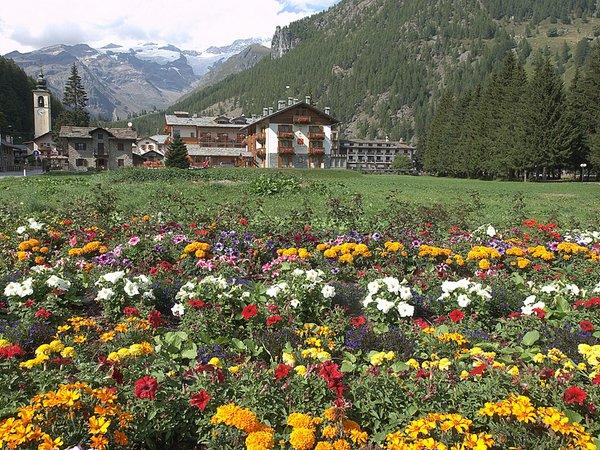 Hotel Lo Scoiattolo  GressoneyLaTrinit  Valle dAosta