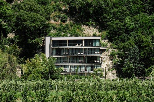 Appartamenti Villa Sasso  Merano  Merano e dintorni
