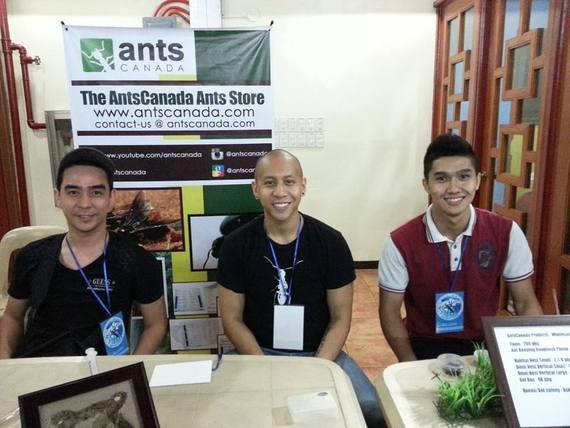 the antscanada ants store