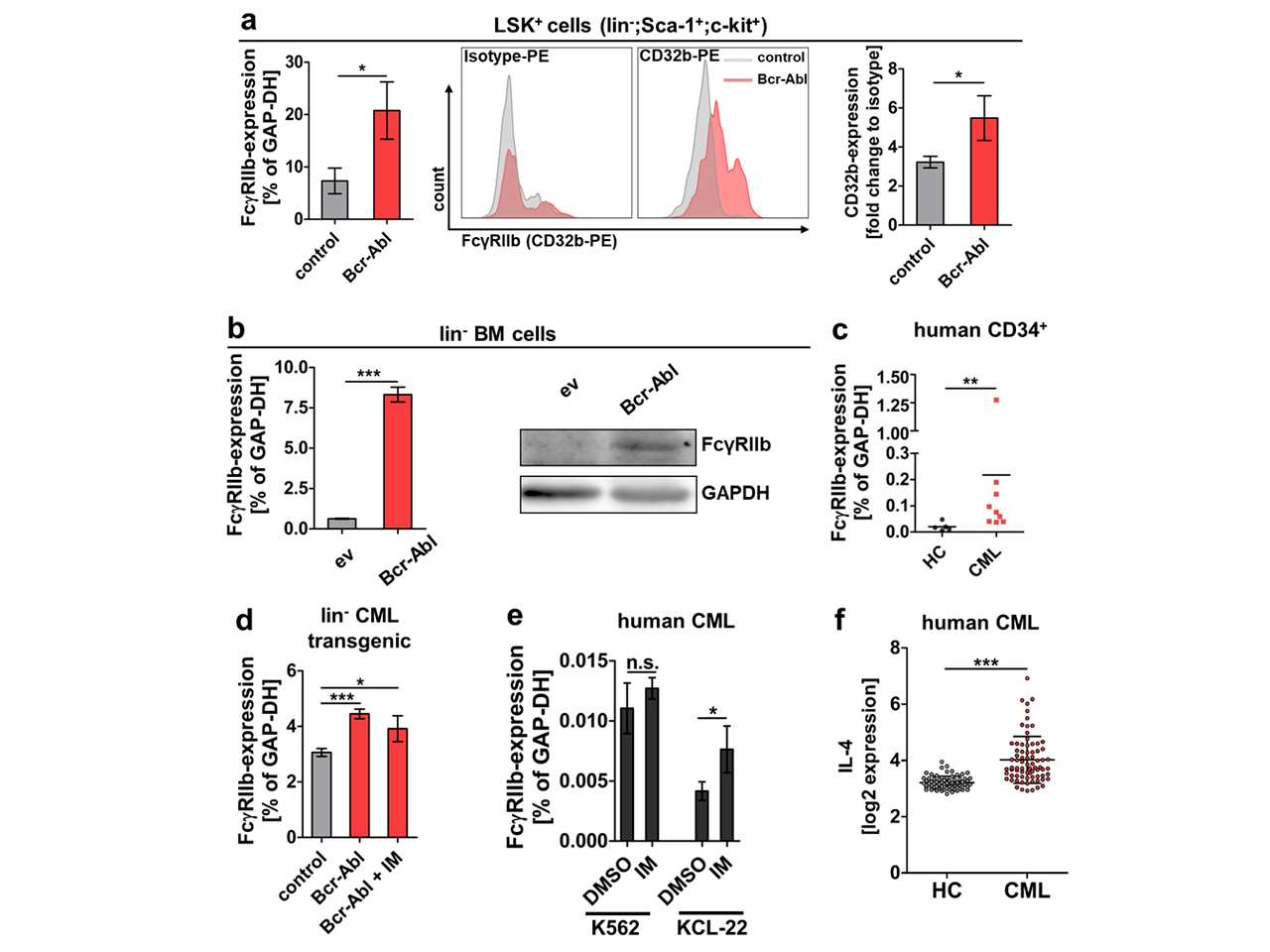 Therapeutic inhibition of FcγRIIb signaling targets