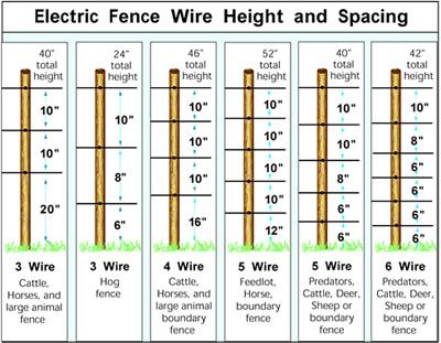 Electric fence wire heights also fencing for goats sheep zareba rh zarebasystems