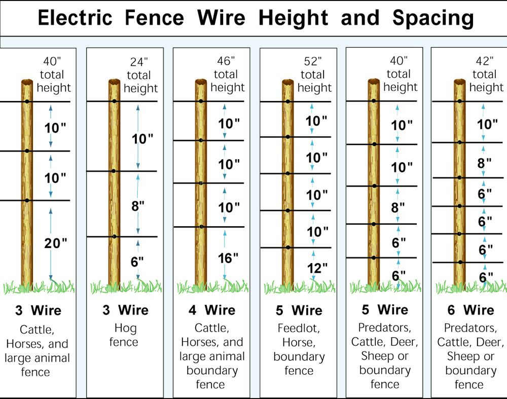 hight resolution of single line electric fence diagram