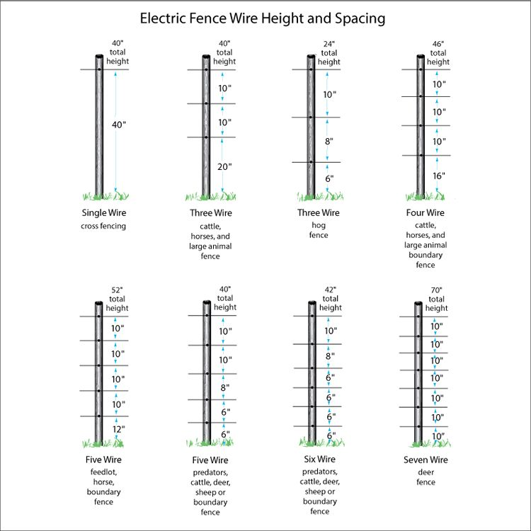 Wire height guide by animal also fi shock ft strand polywire model pw  fs rh zarebasystems