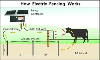 How Does an Electric Fence Work  Zareba
