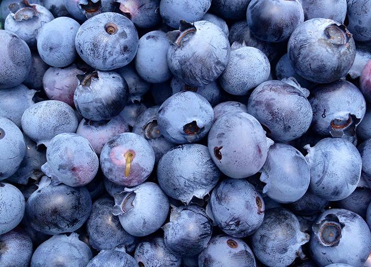 focus foods blueberries
