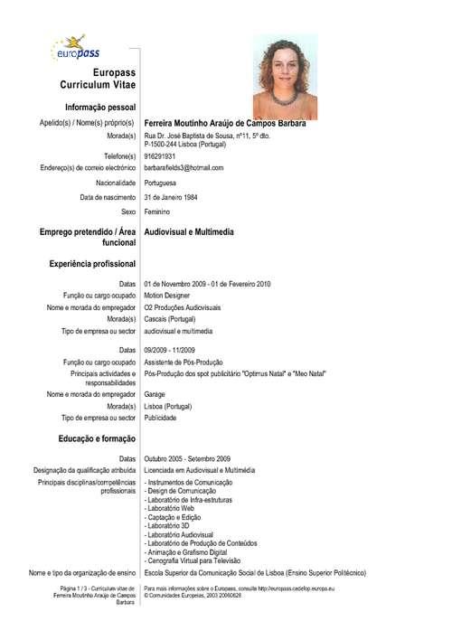 Formato De Un Curriculum Vitae Chile Sample Resume Service