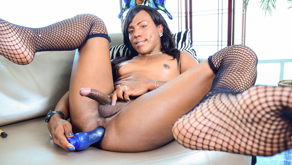 Black Shemale Idol - The Auditions #04, Scene #07