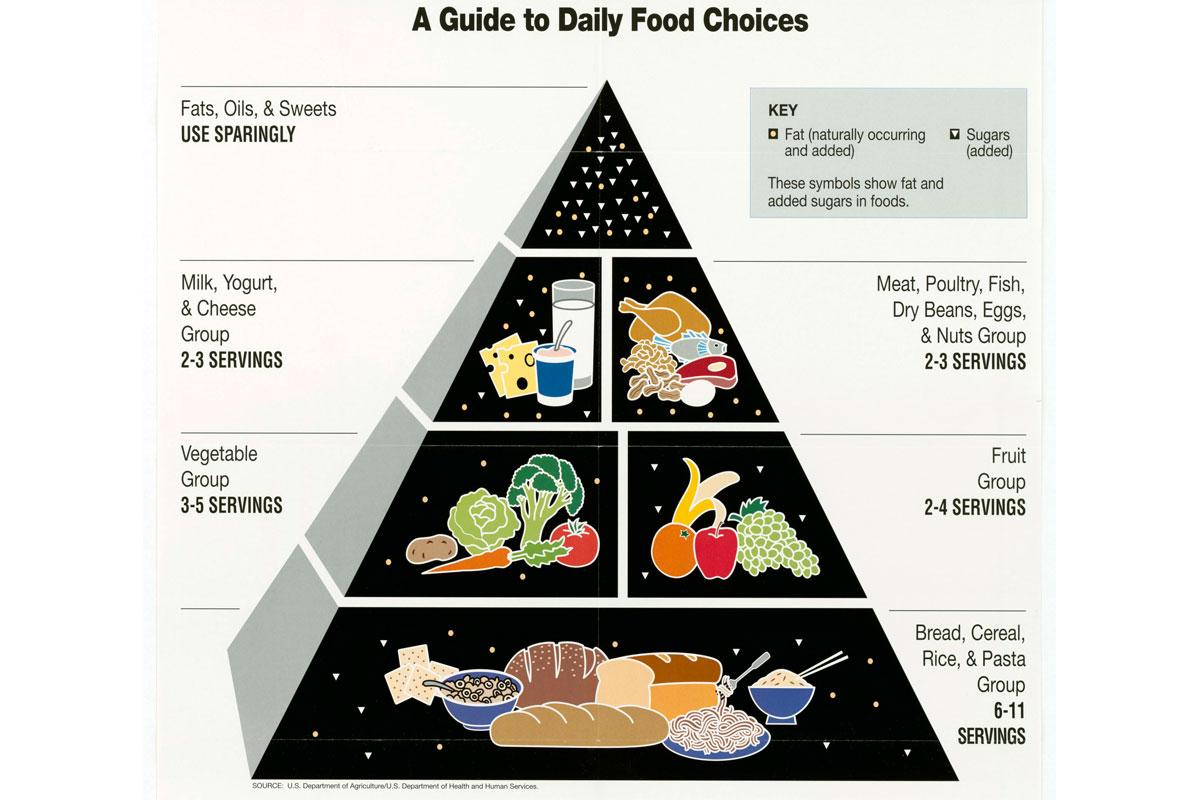 diagram food guide cat5 wiring a vs b the pyramid and other options military