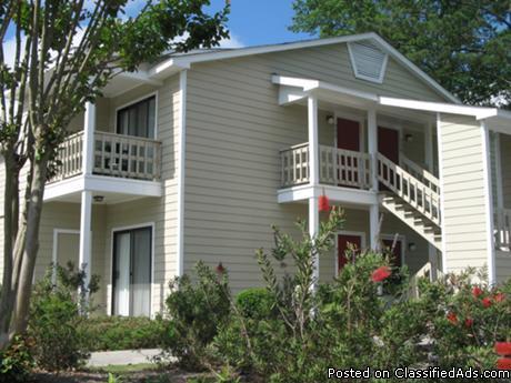 1 bedroom apartments in North Augusta SC for rent in Beech