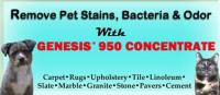 Best Way To Remove Pet Stains & Odors for Sale in Kansas ...