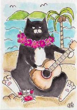 Image result for tuxedo cat ukulele
