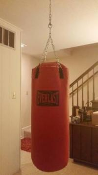 Everlast 70 lb Hanging Punching Bag with 2 sets of gloves ...