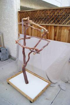 Exotic Bird Stand made from Parrot Safe Manzanita Wood for