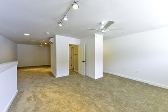 Fulton Supply Lofts Rentals  Atlanta GA  Apartmentscom