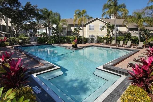 Madison Oaks Apartments  Palm Harbor FL  Apartmentscom