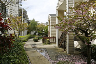 The Overlook at Westridge Rentals  Seattle WA
