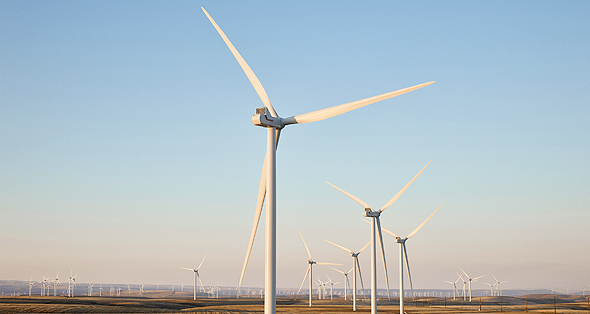 Apple windmills