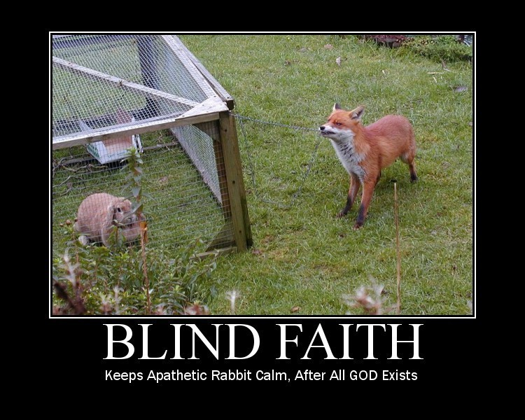 Wolf And Sheepdog Quote Wallpaper Blind Faith Fox Photo 1426397 Fanpop