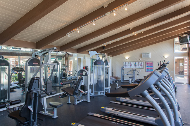 Fitness Center The Homestead Apartments