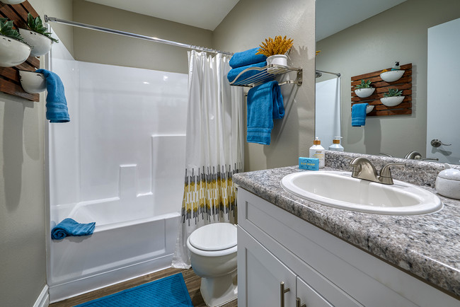 Chandler Meadows Luxury Furnished Apartments For Rent in