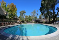Club Pacifica Apartments For Rent in Benicia, CA | ForRent.com