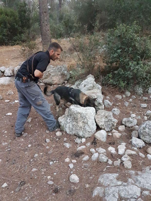 Тренировки интенсивные как для человека, так и для собаки. Фото: пресс-служба полиции