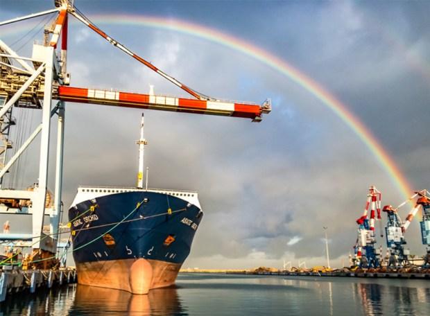 Радуга в Ашдодском порту. Фото: Шабтай Таль