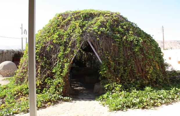 Зеленый уголок в кибуце Лотан. Фото: Яэль Лернер