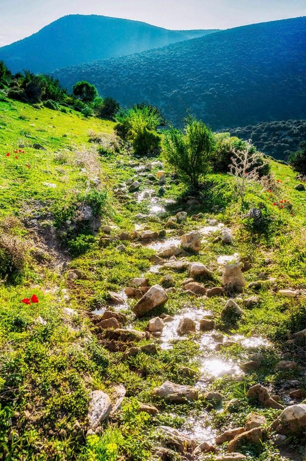 Заповедник Нахаль Амуд в Верхней Галилее